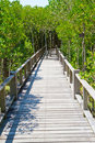 Wooden bridge and forest Stock Images