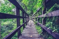 Wooden bridge in forest low angle shot of a Stock Images