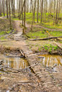 Wooden bridge in the forest spanning river Stock Photo