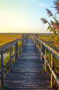 Wooden bridge leading into lake Royalty Free Stock Photo