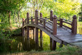 Wooden bridge in the natural public park Stock Images