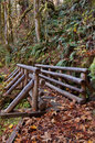 Wooden bridge on nature trail made out of logs in mountains Royalty Free Stock Image