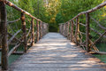 Wooden bridge in a park Royalty Free Stock Photo