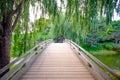 Wooden bridge path with trees