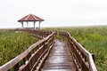 Wooden bridge and  pavilion lake on drop raining  in Sam Roi Yot Royalty Free Stock Photo