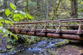 Wooden bridge with rain water on it through a forest creek flows beneath foot Royalty Free Stock Photos