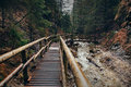 Wooden bridge in Slovak tatra mountain forest Royalty Free Stock Photo