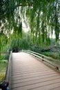Wooden bridge with trees