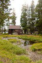 Wooden cabin in forest Royalty Free Stock Photo