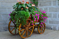 On a wooden cart of flowers Royalty Free Stock Photo