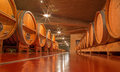 Wooden casks in modern wine cellar trnava slovakia march of great slovak producer mrva and stanko Royalty Free Stock Photo