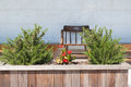 Wooden chair in small garden Stock Image