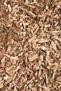 Wooden chips background close up. Used as an organic mulch in gardening, landscaping, restoration ecology Royalty Free Stock Photo