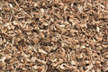 Wooden chips for green energy in the netherlands sawed trees are processed into woodchips wood remains largest biomass source Stock Photography