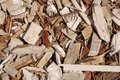 Wooden chips on the ground closeup Stock Images