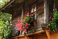 Wooden country house window of with flowers on windowsill Stock Photos
