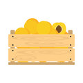 Wooden crate with apricots