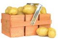 A wooden crate of potatoes Royalty Free Stock Image