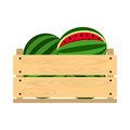 Wooden crate with watermelon