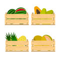Wooden crates with fruits