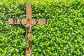 Wooden crucifix with INRI written on it in front of a hedge with green leaves Royalty Free Stock Photo