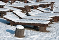 Wooden deck chairs covered with snow Royalty Free Stock Photos