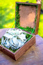 Wooden design gift box on board moss stylized with rings Royalty Free Stock Photos