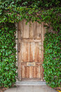Wooden door with green leaves Royalty Free Stock Photo