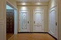 Wooden door modern family illuminative beautiful Royalty Free Stock Photography
