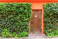 Wooden door of a red painted, ivy overgrown house Royalty Free Stock Photo