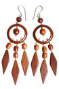 Wooden earrings Stock Image