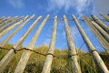 Wooden fence, blue sky Royalty Free Stock Photo