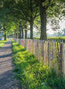 Wooden fence and a curved narrow path in early morning back lighting Stock Photography