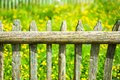 Wooden fence with meadow behind it Stock Image