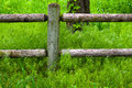 Wooden fence and post surrounded by nature Stock Image