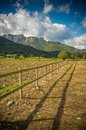 Wooden fence small in field Stock Photography