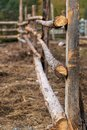Wooden fence. Three logs. Countryside Royalty Free Stock Photo