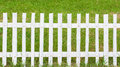 Wooden fence white and grass Stock Image