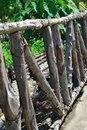 Wooden fencing Stock Image
