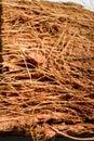 Wooden fibers