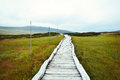 Wooden footbridge leading through peat bog Royalty Free Stock Photo
