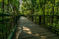 Wooden footbridge in the park Royalty Free Stock Photo