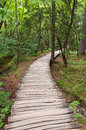 Wooden footpath in a forest plitvice lakes national park Stock Photography