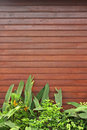 Wooden Forefront with Plants Stock Images
