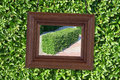 Wooden frame on the background of foliage Stock Photography