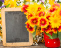 Wooden frame and flowers spring Royalty Free Stock Images