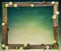 Wooden frame old boards flower ladybug computer graphics Stock Image