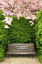 Wooden garden bench Royalty Free Stock Photos