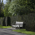 Wooden garden bench in English garden Royalty Free Stock Photo