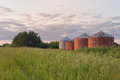 Wooden grain bins in tall grass Royalty Free Stock Photo